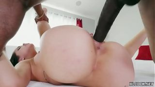 animal with girl sex video